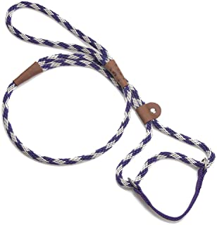 product image for Mendota Pet Dog Walker, Martingale Style Leash - Leash & Collar Combo, Made in The USA - Amethyst, 3/8 in x 6 ft - for Small/Medium Breeds