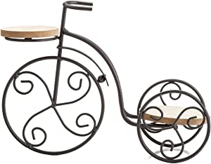 TJ Global 2-Plant Iron Bicycle Plant Stand, Metal Wire Flower Pot Wrought Iron Planter for Plants, Flowers, Garden, Patio, Office, Balcony Outdoor and Indoor Decor