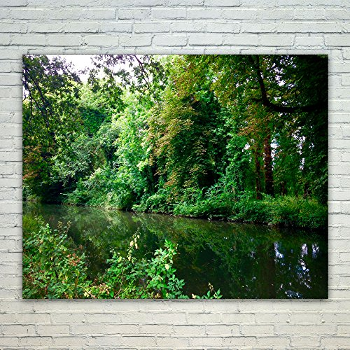 Crystal Forest Loop - Westlake Art Forest Nature - 16x20 Poster Print Wall Art - Modern Picture Photography Home Decor Office Birthday Gift - Unframed 16x20 Inch (A267-13485)