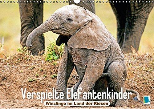 Elefantenkinder: Winzlinge im Land der Riesen (Wandkalender 2017 DIN A3 quer): Afrikanische Elefantenbabys spielen im Schutz Ihrer Herde (Monatskalender, 14 Seiten ) (CALVENDO Tiere)