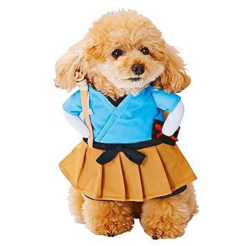 ENCOCO Vestido para mascotas, divertido, primavera, verano, ropa de fiesta, ropa para gato y perro, Small: Amazon.es: Hogar