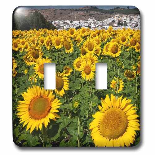 3dRose lsp_205764_2 Spain, Andalusia, Cadiz Province. Sunflower Fields Near Bornos. Double Toggle Switch by 3dRose