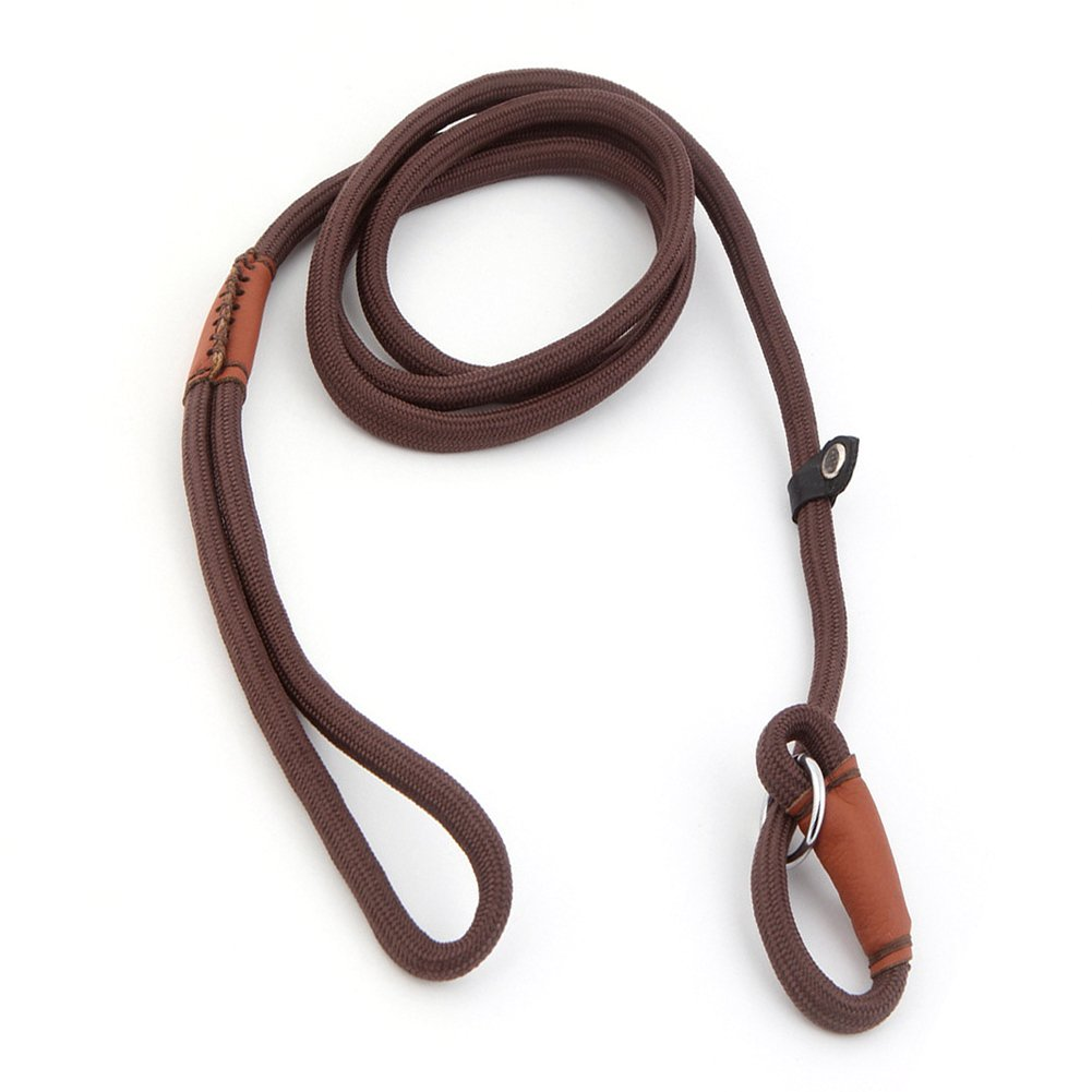 Gold Wing Pet Dog Nylon Adjustable Loop Slip Leash Training Walking Rope Coffee L