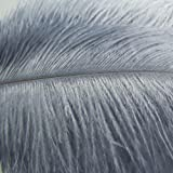 KOLIGHT1000pcs Ostrich Feather Gray 12''-14'' Natural Feathers Wedding, Party ,Home ,Hairs Decoration