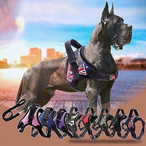 Harnais R/éfl/échissant Respirant lzndeal Harnais et Laisse pour grand//moyen//petit chien S M L Harnais de la veste de chien