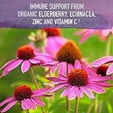 Garden of Life mykind Organics Plant Based