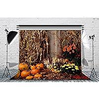 LB 7x5ft Harvest Season Halloween Theme Vinyl Photography Backdrop Customized Studio Background Photo Backdrops Studio Props WSJ06