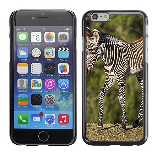 Premio Sottile Slim Cassa Custodia Case Cover Shell // F00007265 zèbre // Apple iPhone 6 6S 6G 4.7""