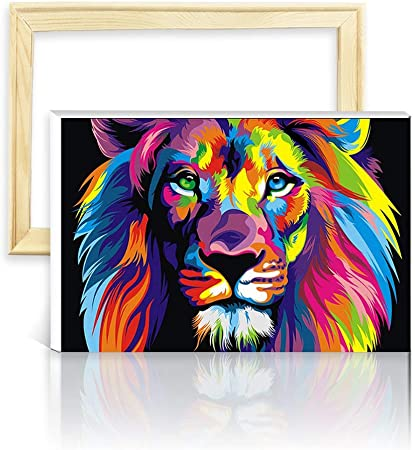 decalmile Peinture par Numéro Kits DIY Peinture