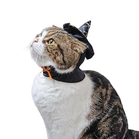 Bwiv sombrero de bruja para gatos y perros pequeños disfraz de Halloween para mascotas Negro con