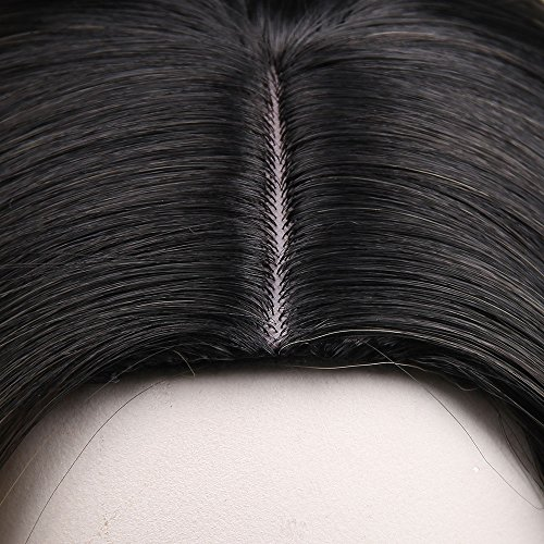 AISI HAIR Synthetic Wigs Long Straight Ombre Wig Heat Resistant Fiber Natural Two Tones Wigs For Women