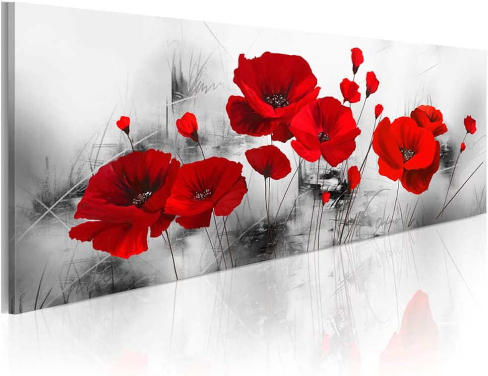 KKZZZ sobre imágenes Rojo de Las Amapolas Parcialmente Pantalla Cuadro en Lienzo no Tejido Impermeable Arte Mural Imprimir Pared decoración de la Pared Sala de Estar decoración Moderna,30x90cm