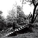Timber Timbre Timber Timber Vinyl Amazon Com Music