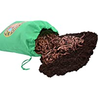 Uncle Jim's Worm Farm European Nightcrawlers Composting and Fishing Worms 2 Lb Pack