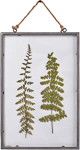 "NIKKY HOME 10"" x 15"" Vintage Metal Framed Fern Botanical Glass Wall Art Print with Rope"