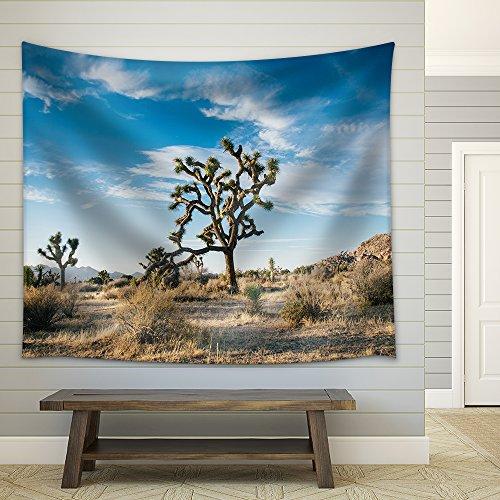 Beautiful Desert Landscape Fabric Wall
