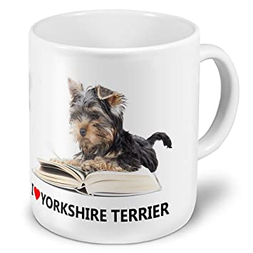 Yorkshire Terrier Taille Xxl Tasse A Cafe Avec Hundebild Yorkshire