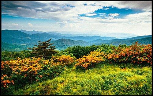 goog-g-smoky-mountains-appalachian-trail-236l-x-157wvarious-of-sunrise-entrance-indoor-outdoor-floor