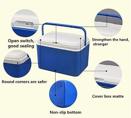 Refrigerador para automóvil - Mini congelador - Caja de ...