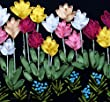 Silk Ribbon Embroidery Kit Different Colors Flower Assorted Colors of Tulips