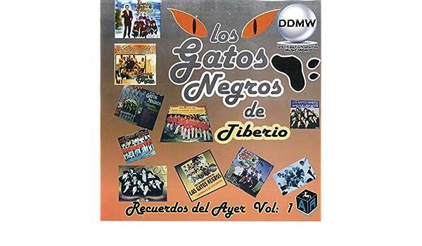 Mosaico Gato, No. 2 by Los Gatos Negros De Tiberio on Amazon Music - Amazon.com