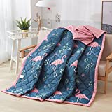 KFZ Children Quilt Comforter Bedspread for Bed Breathable JML Three Sizes Cartoon Animals Cat Family Cute Tiger Lovely Flamingos Designs One Piece (Flamingo Bird,Blue, Twin, 59''x78'')