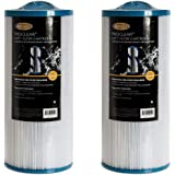 Jacuzzi 6000-383 Filter, 60 Sq Ft, J-300 Series 2002+ (2 Pack)