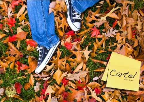 Cartel VI: Fall, 2013