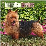 Australian Terriers Calendar