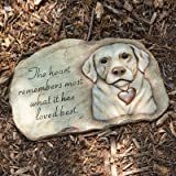 Evergreen Enterprises Pet Memorial Garden Stone
