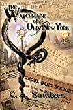 The Watchmage of Old New York (The Watchmage Chronicles Book 1)