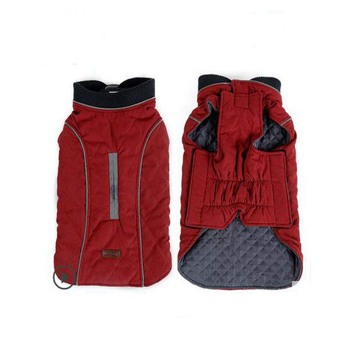 Red L Red L Dog Winter Clothes, Small and Medium Dogs, Four-Legged Cotton Vest (color   Red, Size   L)