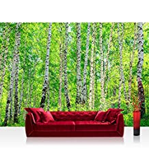 "Photo wallpaper - forest trees birch nature - 137.8""W by 96.5""H (350x245cm) - Non-woven PREMIUM PLUS - BIRCH FOREST - Wall Decor Photo Wall Mural Door Wall Paper Posters & Prints"