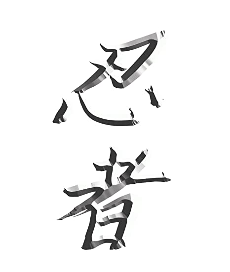 Amazon.com: Japanese Kanji Meaning Ninja white Look Decal ...