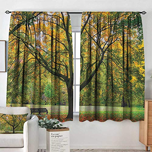 Theresa Dewey Curtain Panels,Set of 2 Tree,Third Season of The Year in The Park Dead Leaves Autumn to Winter Seasonal Picture, Green Yellow,Modern Farmhouse Country Curtains 63