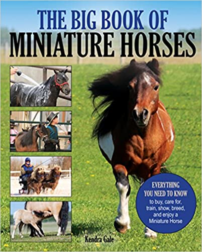 Show The Big Book of Miniature Horses: Everything You Need to Know to Buy Train Care for Breed and Enjoy a Miniature Horse of Your Own