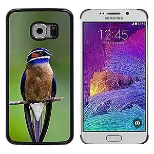 TopCaseStore / la caja del caucho duro de la cubierta de protección de la piel - Songbird Green Branch Feather - Samsung Galaxy S6 EDGE SM-G925