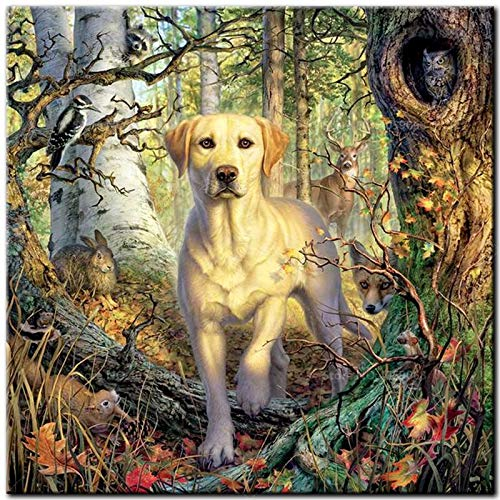 Full Drill Square Diamond Painting 5D DIY Diamond Embroidery Yellow Labrador Cross Stitch Full Round Mosaic Decoration-60x80cm Square