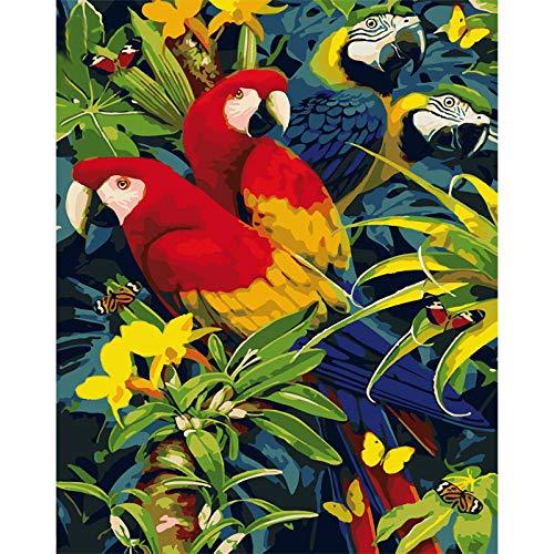 Pintar por Numeros Loro rojo Pintura al oleo bricolaje para Regalos para ninos adultos Decoraciones para el Hogar Regalo hecho a mano 40x50cm