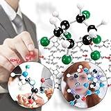 Sumnacon Organic Chemistry Class Molecular Model
