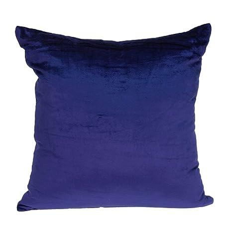 Amazon.com: Funda de almohada Topaz con relleno de plumón ...