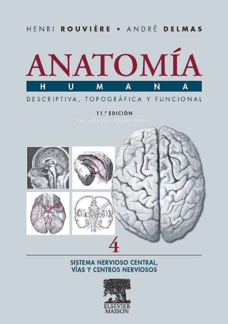 Anatomía Humana Descriptiva, topográfica y funcional. Tomo 4 ...
