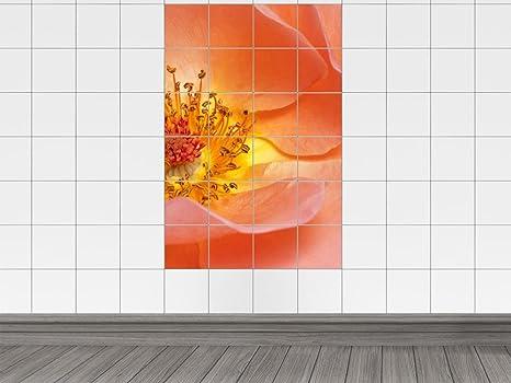 Piastrelle adesivo piastrelle stampa su wild rose arancione