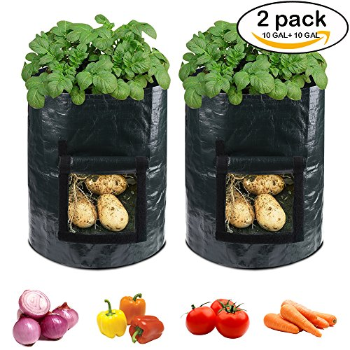 accmor 2 Pack 10 Gallon Garden Potato Grow Bags Planter Bag, Heavy Duty & Durable Bags with Flap and Handles Aeration Fabric Pots Heavy Duty for Grow Vegetables: Potato, Carrot, Tomato, Onion (Tomato Grow Big)