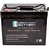 Mighty Max Battery 12V 75AH Internal Thread Battery Wayne ESP25 Back-up Pump Brand Product