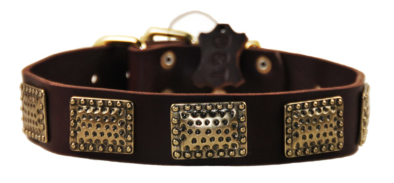 Dean and Tyler  DRUM ROLL  Dog Collar Solid Brass Hardware Brown Size 56cm x 4cm Width. Fits neck size 20 Inches to 24 Inches.