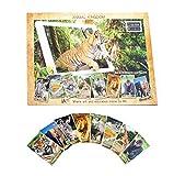 Animal Kingdom Education Book (Augmented Reality) Interactive Animal Books
