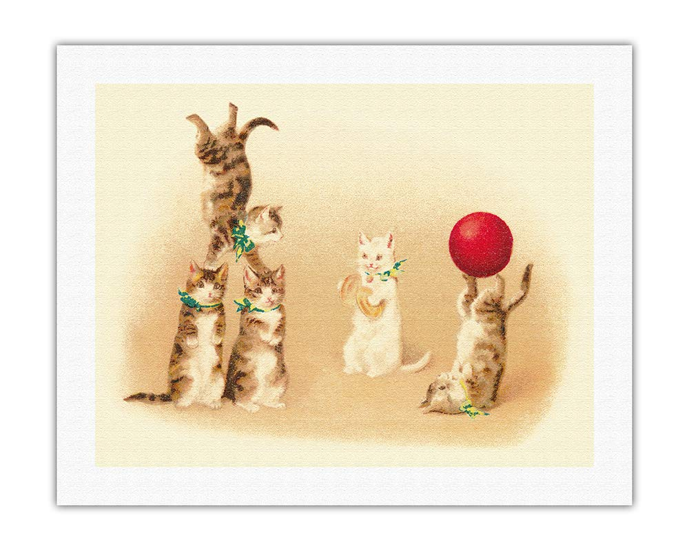 Pacifica Island Art 8in x 12in Vintage Tin Sign Cats Playful Kitten Circus by Helena Maguire