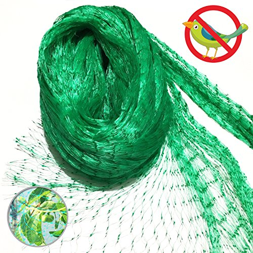 13 Ft x 33 Ft Anti Bird Netting Green Garden Bird Net, Plants Fruits Berry Mesh Netting Protect Against Rodents (Best Tomato Plants)