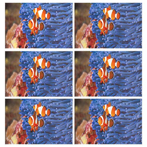 IDO Heat Resistant Placemats for Kitchen Table Mats Dining Room,Facts About Clownfish Washable Insulation Non Slip Placemat 12x18 -